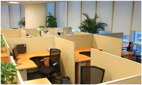 More On Shared Office